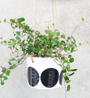 ULLA - medium hanging pot