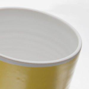 SIRI toothbrush cup X3