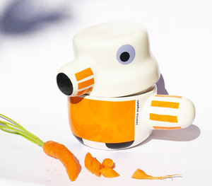 HUSDJURET orange