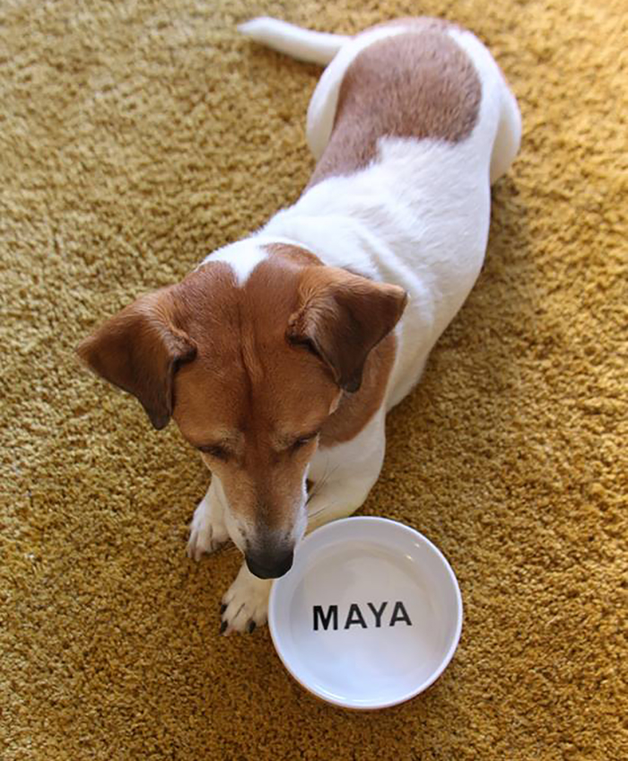 Mayas own dinnerplate.